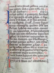 Original Manuscript Leaf Vellum Breviary (2) - 13th century