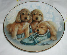 Time Out Plate Puppy Pals Coa