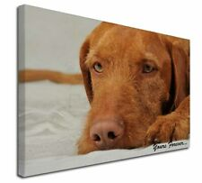 "Hungarian Vizsla 'Yours Forever' 30""x20"" Wall Art Canvas, Extra La, AD-V3y-C3020"