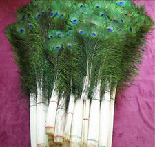 10Pcs Peacock Tail Feathers 10-12inch Party Wedding Cloth Home Floral DIY Decor