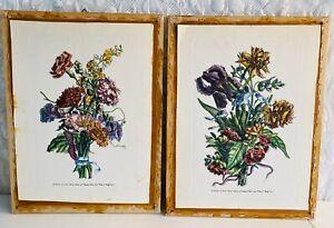 (2) Nicolas Roberts Hand Color Leaf Botanical Block Prints Variae ac Multiformes