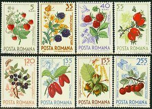 1964 Forest Fruits,Butterflies/Schmetterlinge,Spider,Hazelnuts,Romania,2361,MNH