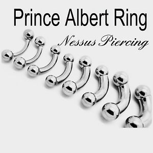 Prince Albert bent bar piercing surgical steel stretch 3mm-10mm PA ring stud