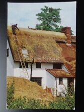Suffolk: Thatching at Wickhambrook c1970's by J.Salmon
