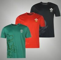 Mens Team Printed Short Sleeves Rugby Poly T Shirt Crew Top Sizes from S to XXXL