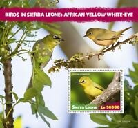 Sierra Leone Birds on Stamps 2020 MNH African Yellow White-Eye White-Eyes 1v S/S