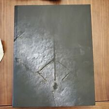 Bloodborne - Collector's Edition Guide Hardcover