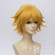 Miraculous Ladybug Chat Noir Anime Costume Cosplay Wig (Need Styled) +Free Track