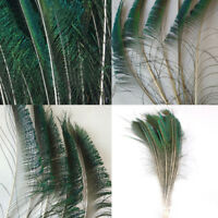 10Pcs Beautiful Natural Peacock Tail Feathers 25-30cm For DIY Decoration New