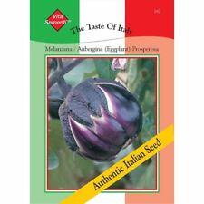 200 graines THOMPSON /& MORGAN-le goût de l/'Italie Aubergine Melanzana prosperosa