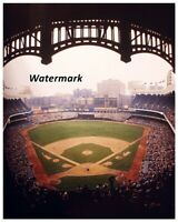 1973 New York Yankees Yankee Stadium Behind the Plate View 8 X 10 Photo Picture