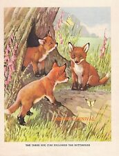 Adorable Red Fox Baby Cubs 1930's Childrens Vintage Art Print Ae Kennedy Cute