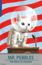 FALLOUT 4 - MR PEBBLES - VIDEO GAME POSTER - 22x34 SPACE CAT 16072