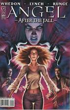 Angel After The Fall #9 comic book Season 6 Tv show series Whedon