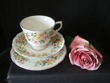 Vintage Colclough Bone China Hedgerow Design Trio Tea Cup Saucer Plate