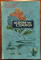 'ACROSS THE COMMON, AFTER WILD FLOWERS': by Dr. M.C. COOKE { Uncle Matt }: 1898.