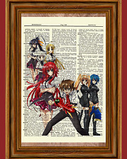 High School DxD Anime Dictionary Art Print Poster Picture Manga