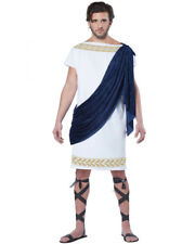 Grecian Toga Greek Roman Caeser Adult Mens Fancy Dress Costume X-large