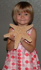 "Extra Large Real Sugar Starfish 8""+ Wedding Crafts seashell Display ITEM #SSF8-1"