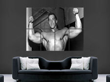 YOUNG ARNOLD SCHWARZENEGGER POSTER GYM CONQUER BODYBUILDING ART LARGE