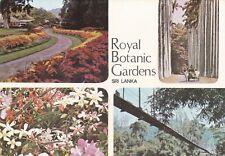 Royal Botanic Gardens Multiview Sri Lanka Postcard unused VGC