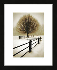 FRAMED ART Solitude by David Lorenz Winston Photographic Print Black Frame 13x16
