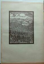 """Carlo D'Aloisio-Xilografia """"La discesa delle pecore""""- originale ( rif:98 )"""