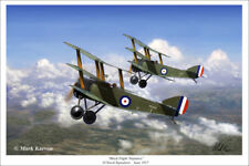 Sopwith Triplane Aviation Art Print