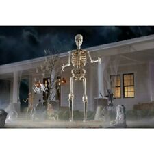 12 Ft. Giant Sized Skeleton with LifeEyes Home Depot New In Box! Free Shipping