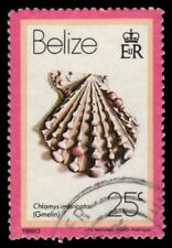 """BELIZE 479 (SG540) - Little Knobbed Scallop """"Chlamys imbricata"""" (pa72637)"""