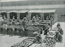 The Manufacture Of Opium In India 1897 Antique Print TQE1163