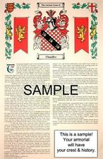 W 's SURNAME - Armorial Name History - Coat of Arms - Family Crest 11x17 CUSTOM