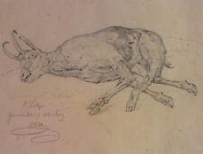 Moritz Eduard LOTZE (1809-1890) - Zeichnung erlegte Gams - sign. + dat. 1831