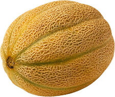 15 Graines de MELON Cantaloup Sucrée Orange Foncé Très Juteuse