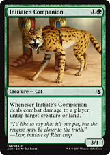 4x 4 x Initiate's Companion x4 Amonkhet Common MINT PACK FRESH UNPLAYED