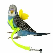 Anti-bite Flying Training Rope Parrot Bird Pet Leash Kits Budgerigar Lovebird