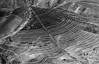B95157 real photo tunisia mise en valeur de la vallee de la medjerda africa