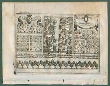 ALIFE, Caserta (Campania). Dall'opera di G.B. Pacichelli. Napoli, anno 1703.