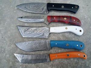 LOT OF 5 Hunting Nest Custom Handmade Damascus steel hunting skinner knife 375