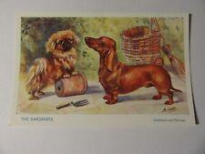 DACHSHUND & PEKINESE The Gardeners ~ Mabel Gear MINT UNUSED J Salmon Postcard