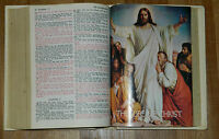 Family Holy Bible King James Version Regency Publishers Red Letter Edition