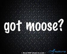GOT MOOSE? - VINYL CAR DECAL