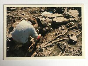Vintage postcard of Whithorn archaeological dig