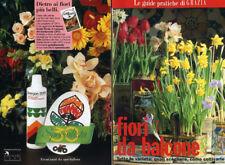 "* FIORI DA BALCONE  N°14/ 9.04.1995 "" by Le guide pratiche di GRAZIA -"