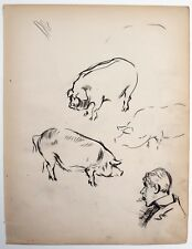 F. H. Townsend (1868–1920) charcoal drawing of pigs + man with cigar. Punch