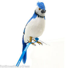 Blue Jay Fabulous Artificial Bird Realistic Fake BlueJay Taxidermy