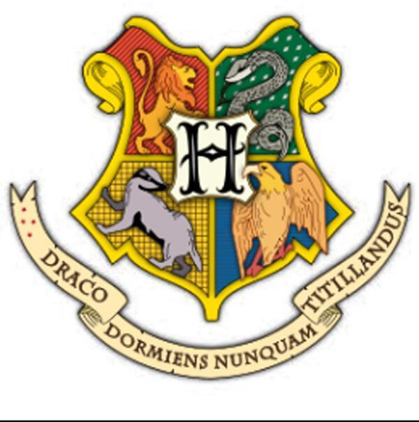 Potter N More