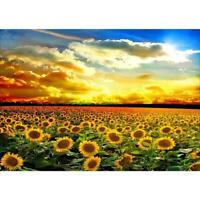 Sunset Sunflower 5D Full Drill Diamond Painting Embroidery Cross Stitch DIY