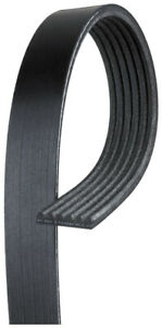 Genuine GM Belt 19355282