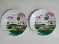 Piatti da collezione Richard Ginori D-88 piatto ornamentale porcellana ceramica